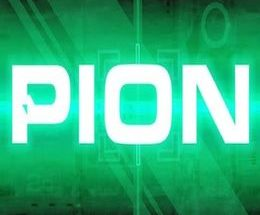 PION Game